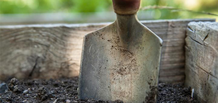 Left in the dirt: What's driving our sharemarket performance?